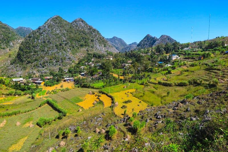 Terrasserade fält och landskapet av det Ha Giang landskapet, nordliga Vietnam royaltyfria bilder