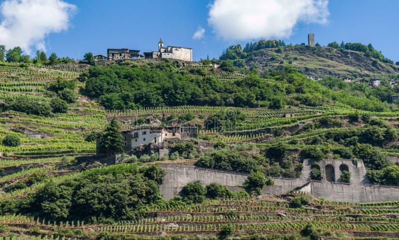 terrasserade vingårdar arkivfoton