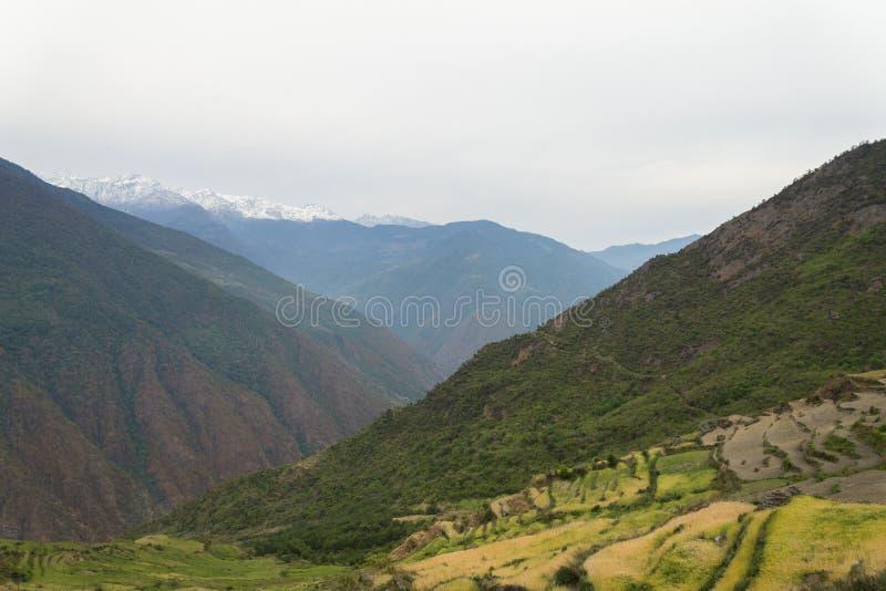 Terrasserat fält och snömontainområde royaltyfri bild