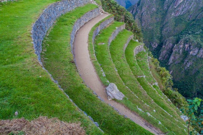 Terrasses agricoles chez Machu Picchu image libre de droits