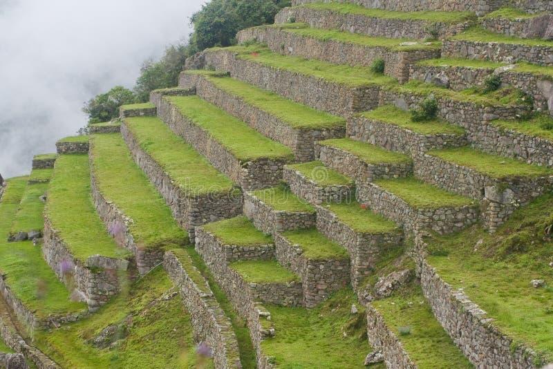 Terrasses chez Machu Picchu images stock