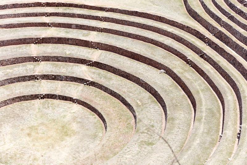 terrasses circulaires au Moray photos libres de droits