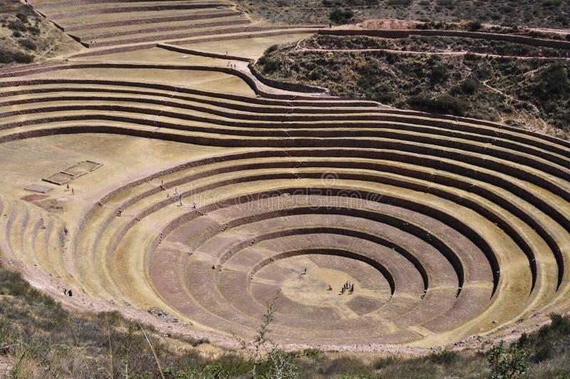 Terrasses circulaires de Moray, Pérou photo stock