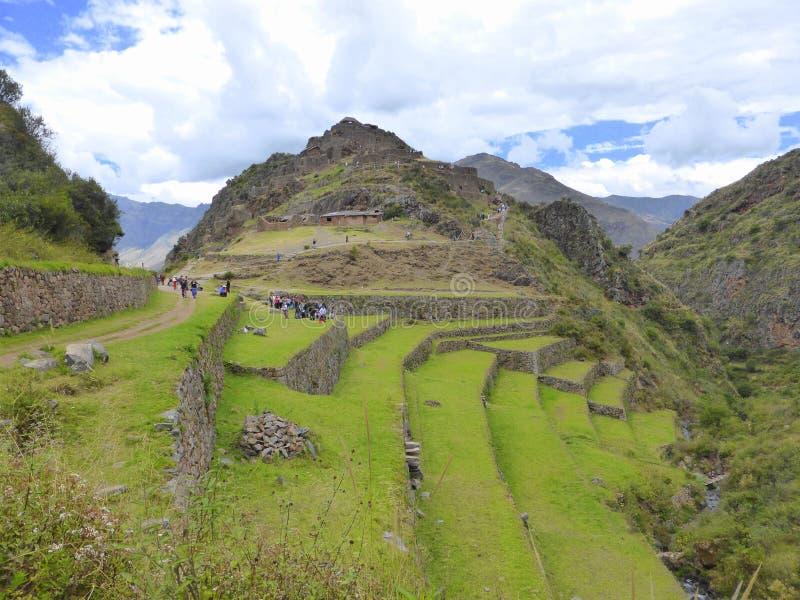 Terrasses d'Inca en montagnes des Andes photos libres de droits