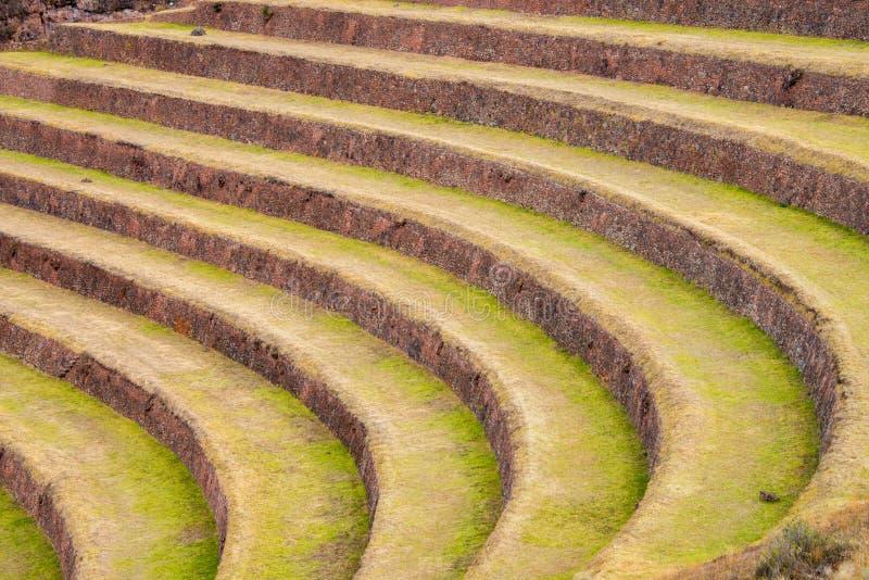 Terrasses dans Pisac photo libre de droits