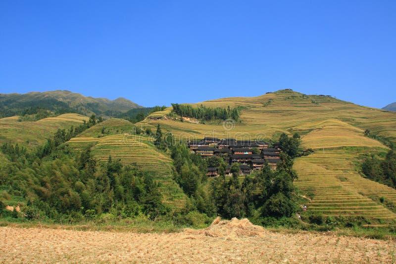 Terrasses de Longji images stock
