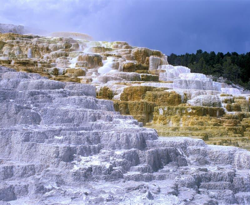 Terrasses de Mammoth Hot Springs au parc national de Yellowstone image libre de droits