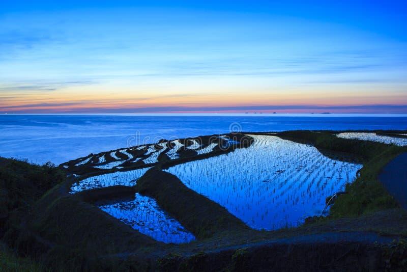 Terrasses de riz au crépuscule photographie stock libre de droits