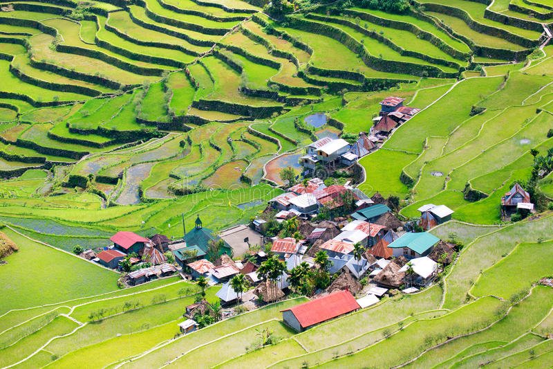 Terrasses de riz aux Philippines Le village est dans un AMO de vallée photographie stock libre de droits