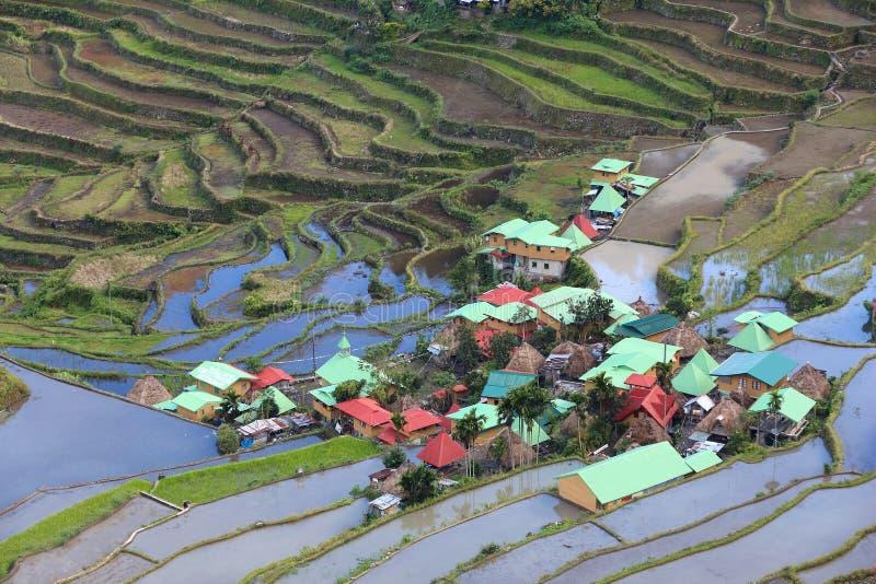 Terrasses de riz de Batad photographie stock