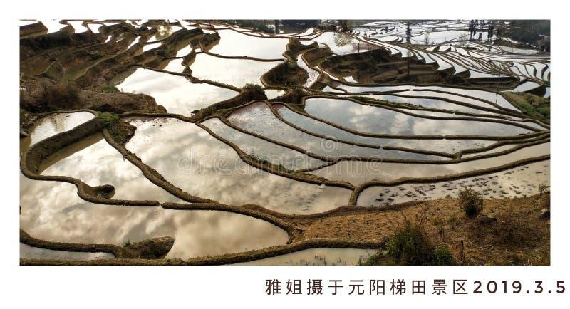 Terrasses de riz dans le secteur de yuanyang, province de Yunnan, Chine image libre de droits