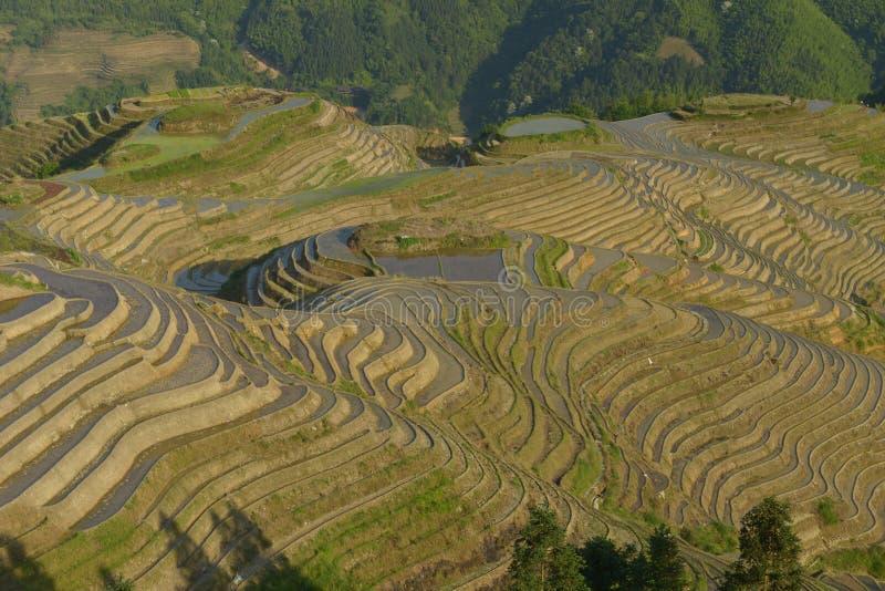 Terrasses de riz de Longji, province de Guangxi, Chine photos stock