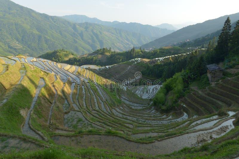 Terrasses de riz de Longji, province de Guangxi, Chine photo stock