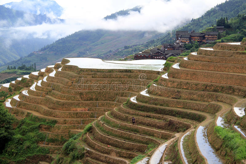 Terrasses de riz de Longsheng ; La Chine photographie stock libre de droits