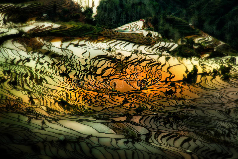 Terrasses de riz de Yuanyang dans Yunnan, Chine images stock