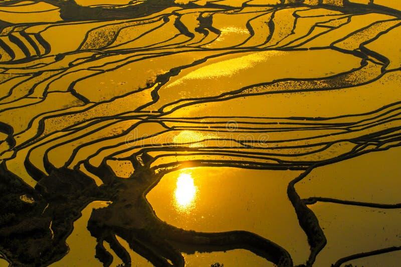 Terrasses de riz de Yuanyang, Yunnan, Chine images stock