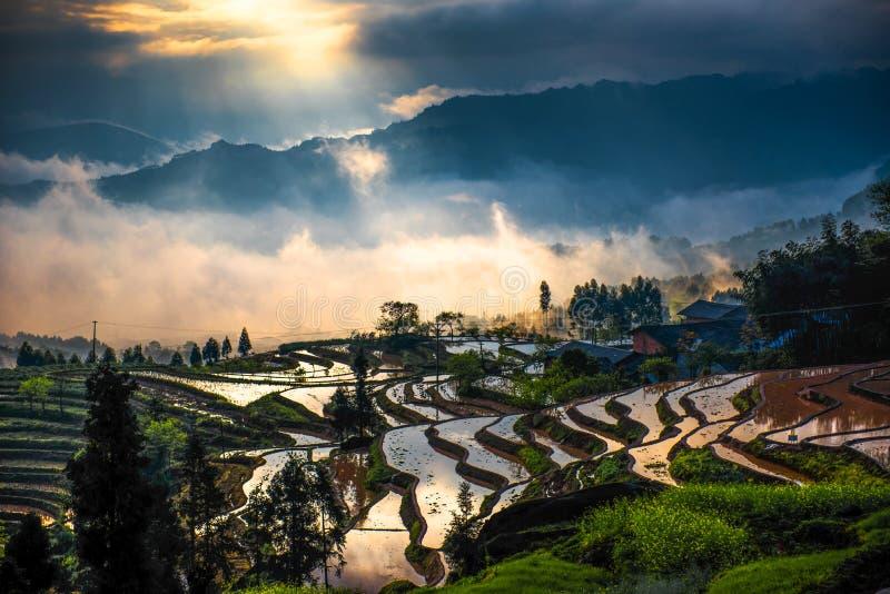 Terrasses de riz et lumière de diffraction photo libre de droits