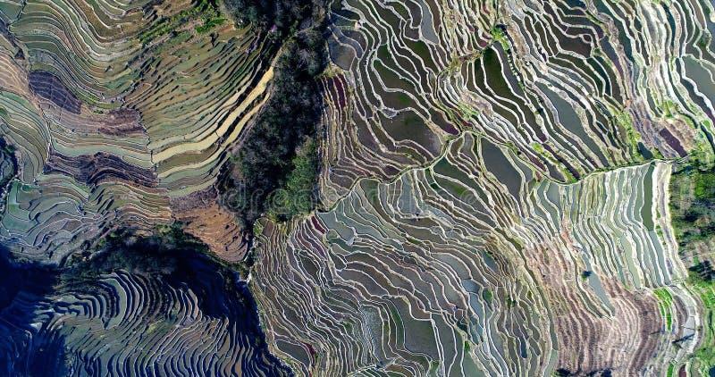 Terrasses de riz de Hani photos stock