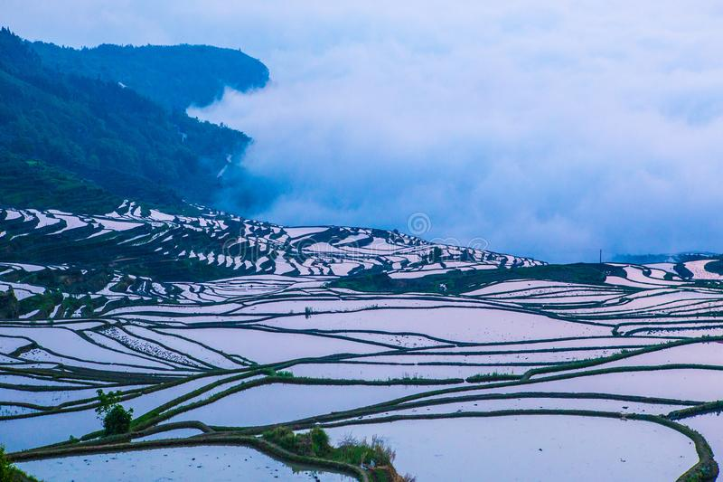 Terrasses de riz de Yuanyang en Chine images stock