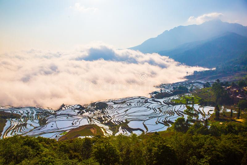 Terrasses de riz de Yuanyang en Chine image stock