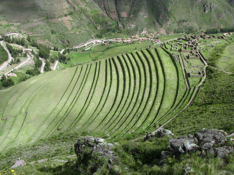 Terrasses de vallée d'Urubamba. Au-dessous de Machu Picchu. Le Pérou photos stock