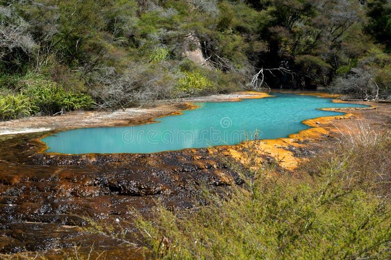 Terrasses de Warbrick, vallée volcanique de Waimangu photographie stock