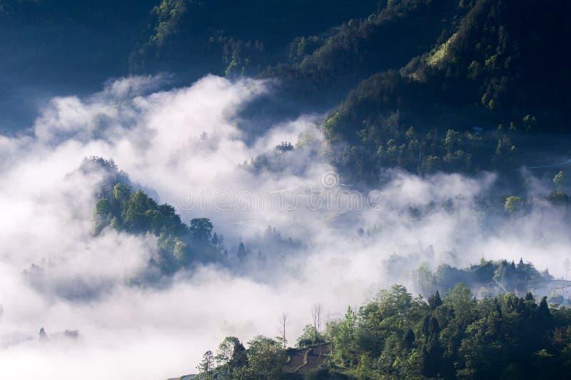 Terrasses et brouillard de riz photographie stock