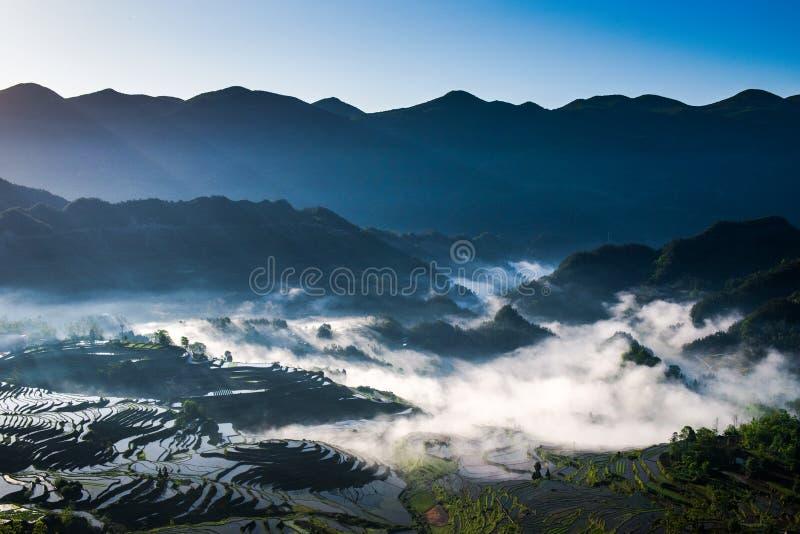Terrasses et brouillard de riz photos stock