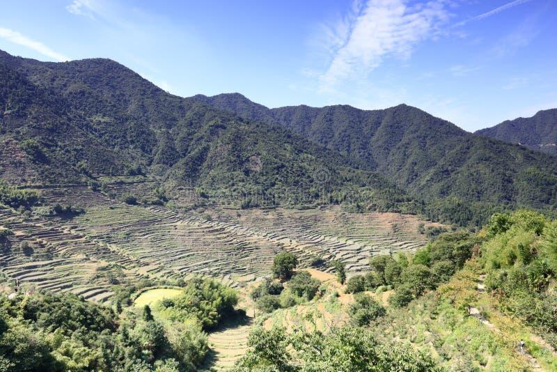 Terrasses ordonnées sur la montagne huangling, adobe RVB photo stock