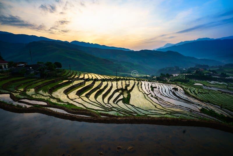 Terrasvormig padieveld in ochtend in waterseizoen, de tijd alvorens te beginnen rijst in Y Ty, Lao Cai-provincie, Vietnam kweekt stock afbeelding
