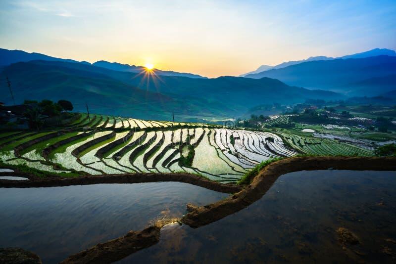 Terrasvormig padieveld in ochtend in waterseizoen, de tijd alvorens te beginnen rijst in Y Ty, Lao Cai-provincie, Vietnam kweekt royalty-vrije stock afbeeldingen