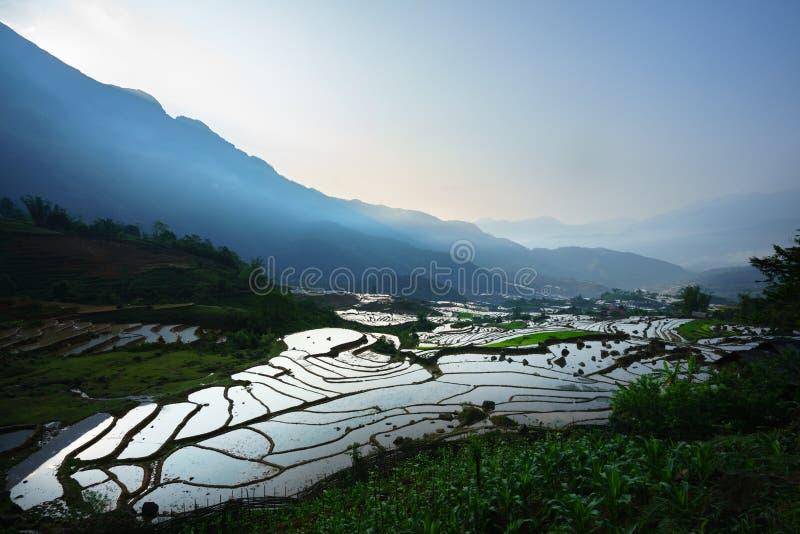 Terrasvormig padieveld in waterseizoen, de tijd alvorens te beginnen rijst in Y Ty, Lao Cai-provincie, Vietnam kweekt royalty-vrije stock fotografie