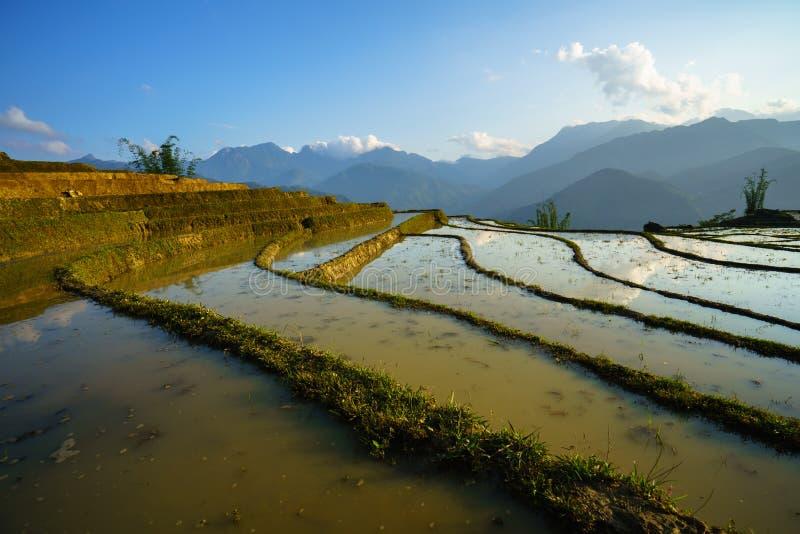 Terrasvormig padieveld in waterseizoen, de tijd alvorens te beginnen rijst in Y Ty, Lao Cai-provincie, Vietnam kweekt stock foto