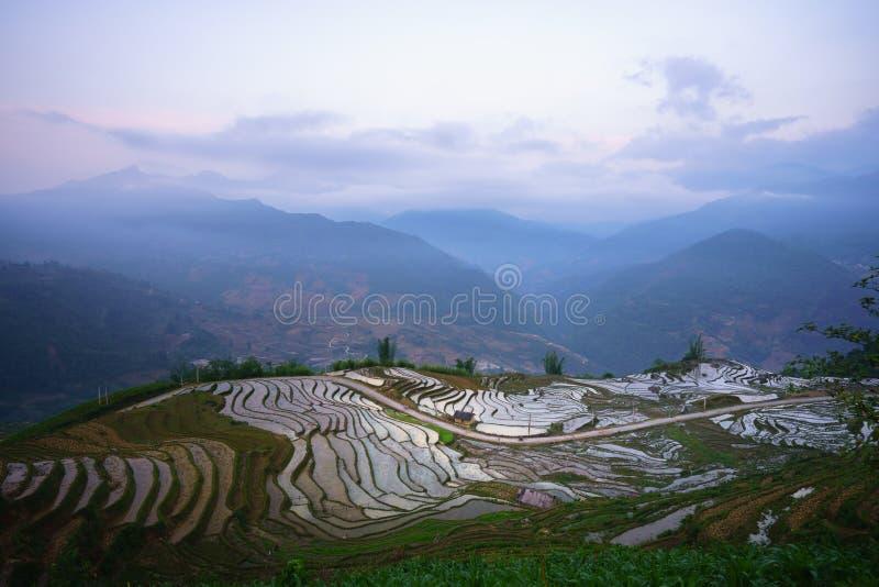 Terrasvormig padieveld in waterseizoen, de tijd alvorens te beginnen rijst in Y Ty, Lao Cai-provincie, Vietnam kweekt royalty-vrije stock foto