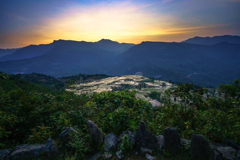 Terrasvormig padieveld in waterseizoen door zonsondergangperiode, de tijd alvorens te beginnen rijst in Y Ty, Lao Cai-provincie,  stock fotografie