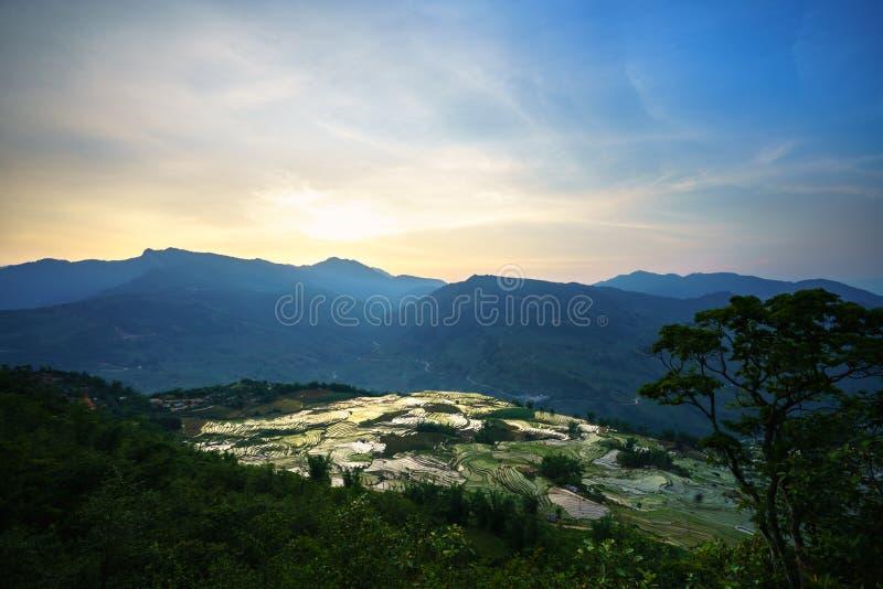 Terrasvormig padieveld in waterseizoen door zonsondergangperiode, de tijd alvorens te beginnen rijst in Y Ty, Lao Cai-provincie,  royalty-vrije stock foto