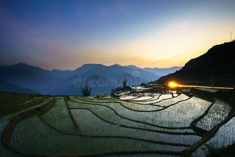 Terrasvormig padieveld in waterseizoen door zonsondergangperiode, de tijd alvorens te beginnen rijst in Y Ty, Lao Cai-provincie,  stock foto