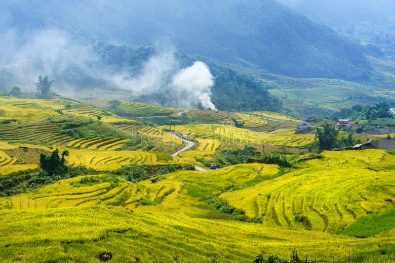 Terrasvormig padieveldlandschap in het oogsten van seizoen in Y Ty, het district van Knuppelxat, Lao Cai, Noord-Vietnam royalty-vrije stock fotografie