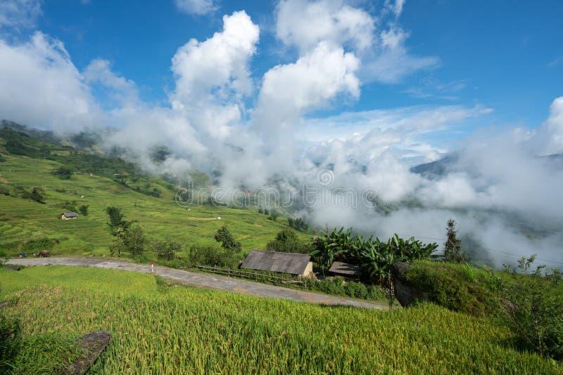 Terrasvormig padieveldlandschap met lage wolken in Y Ty, het district van Knuppelxat, Lao Cai, Noord-Vietnam stock afbeelding