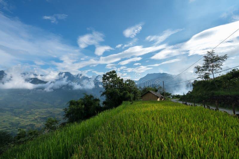 Terrasvormig padieveldlandschap met lage wolken in Y Ty, het district van Knuppelxat, Lao Cai, Noord-Vietnam royalty-vrije stock fotografie