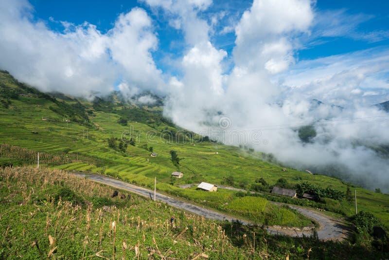 Terrasvormig padieveldlandschap met lage wolken in Y Ty, het district van Knuppelxat, Lao Cai, Noord-Vietnam stock fotografie