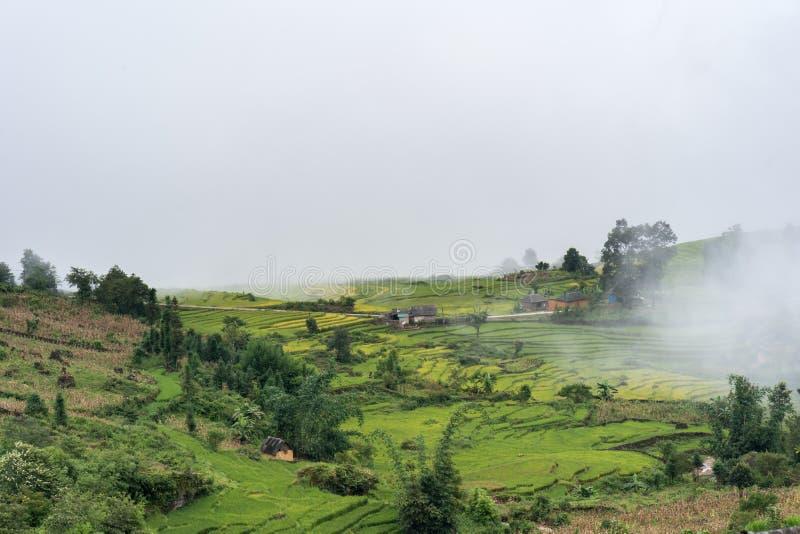 Terrasvormig padieveldlandschap met nevelige wolken van Y Ty, het district van Knuppelxat, Lao Cai, Noord-Vietnam royalty-vrije stock afbeelding