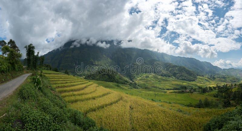 Terrasvormig padieveldlandschap van Y Ty, het district van Knuppelxat, Lao Cai, Noord-Vietnam stock foto's