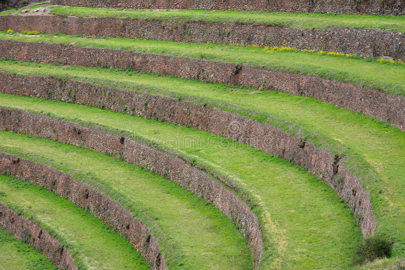 Terrasvormige gebieden op het archeologische gebied van Inca van Pisac, Peru stock afbeelding
