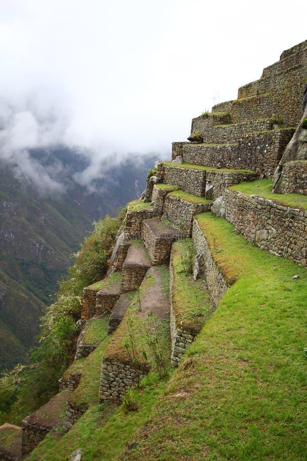 Terrasvormige Gebieden van Machu Picchu royalty-vrije stock foto's