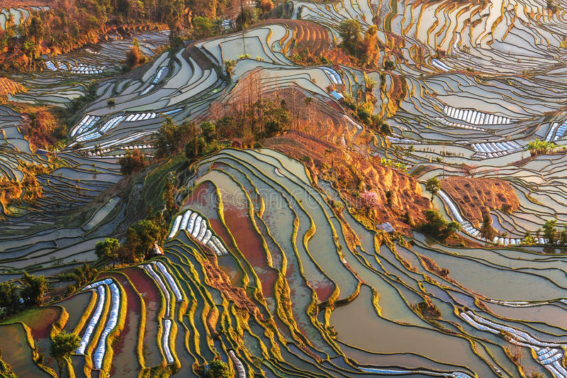 Terrasvormige gebieden in yunnan landschap royalty-vrije stock foto