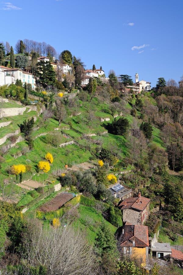 Terrasvormige tuinen aan San Vigilio, Lombardije, Italië stock fotografie