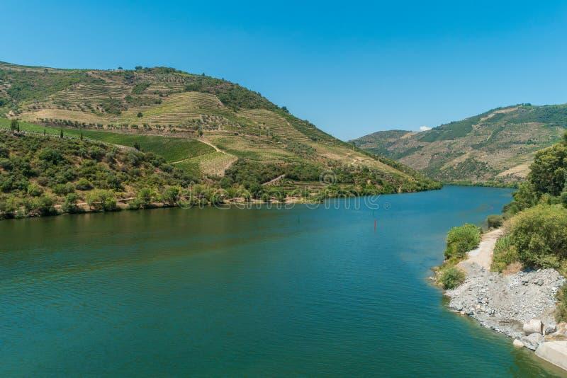 Terrasvormige wijngaarden in Douro-Vallei Alto Douro Wine Region binnen noch royalty-vrije stock afbeeldingen