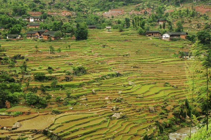Download Terraza china de Fubao (6) imagen de archivo. Imagen de cropland - 1296263