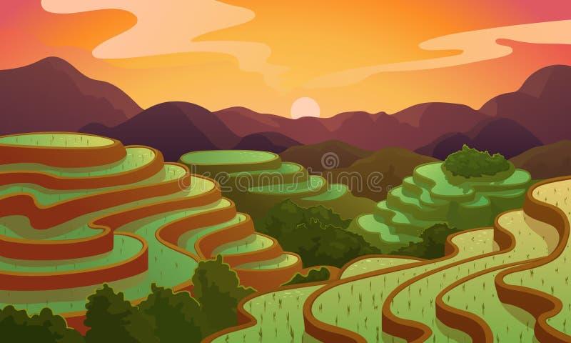 Terraza china del campo del arroz del paisaje del vector ilustración del vector